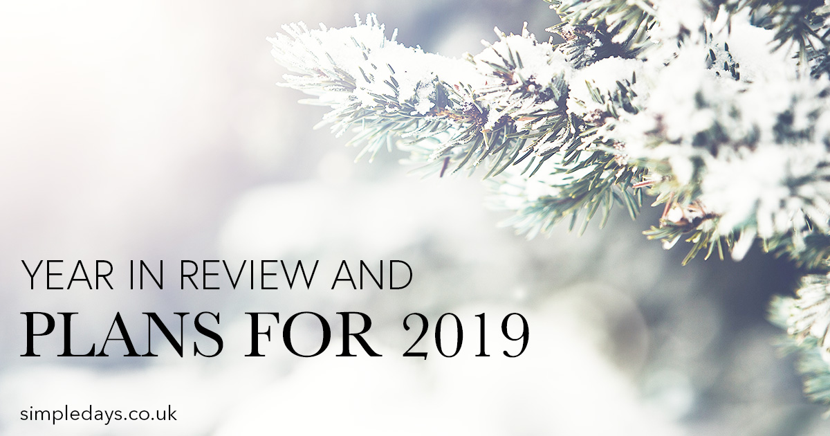Year in review, plans for 2019
